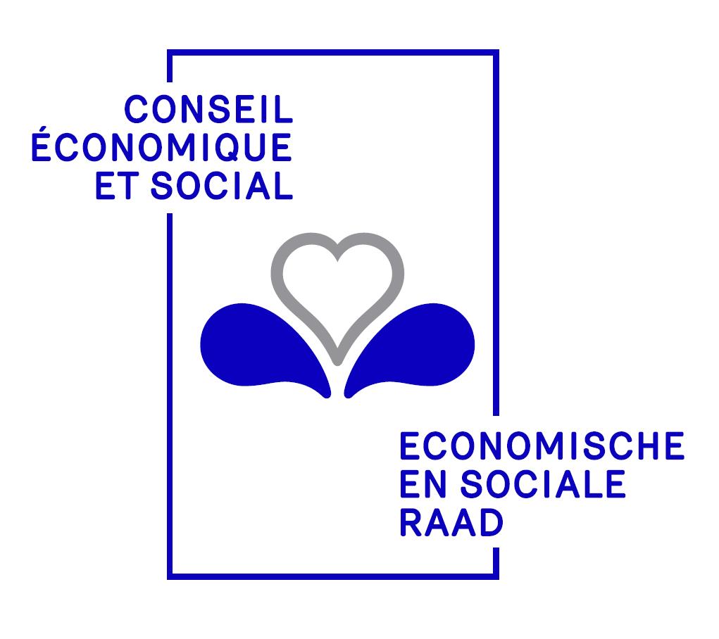 Img Conseil Economique et Social
