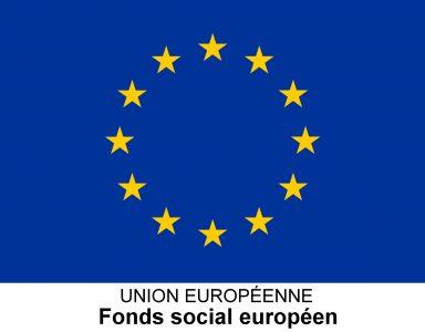 Agence FSE